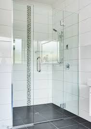frameless glass shower door alcove shower