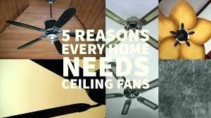 which way should fan turn in summer ceiling fan turns on by itself itself which way