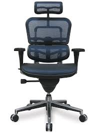 comfiest office chair. Ergohuman Mesh Chair Comfiest Office