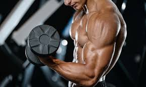 Gym Biceps Workout Chart Arms Workout Guide Best Biceps Triceps Workouts