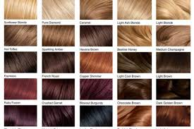Well Hair Color Chart 2019s Best Hair Color Ideas Are Right Here