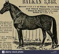 Source et sportsman. Les chevaux. 0 fpmte awtl jfymA JPte&mxa ...