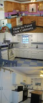 Painted Oak Cabinets The 25 Best Ideas About Painting Oak Cabinets White On Pinterest
