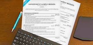 Bio Data Format For Government Jobs Easy Writing Tips
