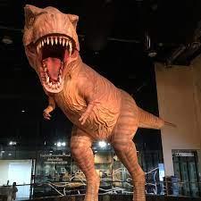 Datei:Dinosaur @พิพิธภัณฑ์สิรินธร ,Sirindhorn Museum ,Kalasin,Thailand -  panoramio.jpg – Wikipedia