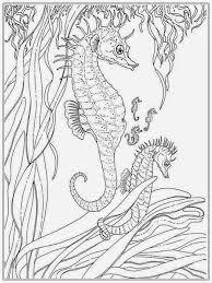 Small Picture Sea Serpent Coloring Pages The Kraken When Myth Encounters