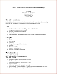 Resume Professional Summary Examples Customer Service Customer Service Resume Summary summary of qualifications for 59