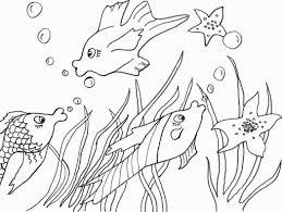 Disegni Da Colorare Bing Bello Ausmalbilder Fische Malen Für