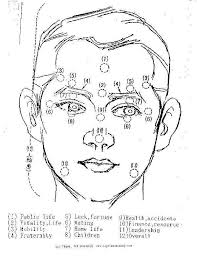 Chinese Medicine Face Reading Chart Chinese Face Reading Chart Google Search Chinese Face