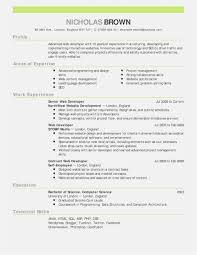 resume for experienced professional template it professional resume templates free download