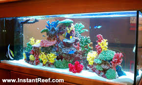 Fish Tank Accessories And Decorations Decorating Freshwater Aquariums With Themes Fishtank decoration 75