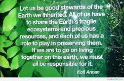 kannada essay on environment thesis driven rhetorical analysis kannada essay on environment