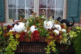 Outside Window Decorations Window Box Decoratemeagemazing Stylist To Boomer Divas Likeme
