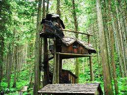 Treehouse Designs Plans   All In One Home Ideas   How to Build    Treehouse Designs Plans