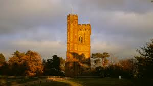 Leith Hill Tower and Countryside | National Trust