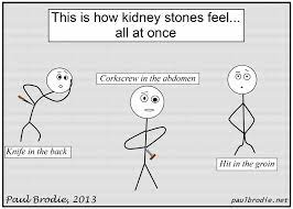 These were get well cookies, but they would be funny for medical, nurse, or doctor cookies. Funny Quotes About Kidney Stones Quotesgram