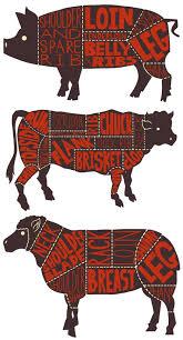 Butcher Cuts Of Beef Chart Pin On Good Eats