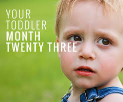 23 Months Milestones Chart 23 Month Old Baby Development Child Development Guide