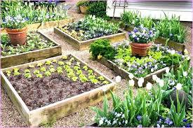 raised garden bed designs garden beds design ideas raised bed gardens plans strikingly beautiful raised bed