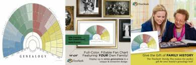 Treeseek Family Tree Wall Poster Fan Chart Large Colored Blank Fillable Form