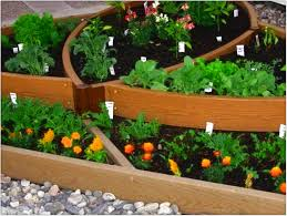 Small Picture Vegetable Garden Designs For Small Yards 14 Dugas Landscape