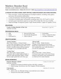 Professional Resume Writing Service Reviews Awesome Best Executive