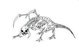 Coloring Skeleton Trustbanksurinamecom