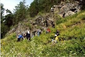 Учебные и производственные практики Собранная геологическая информация в процессе геологической съемки находит отражение в отчетах по практике Защита отчета с представлением коллекции горных