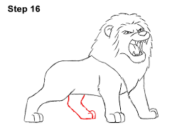 lion drawing. Wonderful Drawing How To Draw Tough Cool Angry Cartoon Lion Roaring 16 Throughout Drawing Y