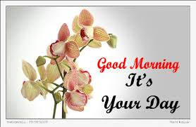 morning image wg140613