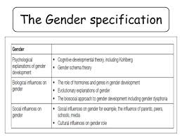 gender roles changing helped in society essay gender roles in society essay majortests