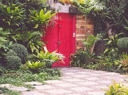 tropical garden design for courtyards