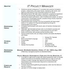 Assistant Project Manager Resume Project Manager Resumes It Project