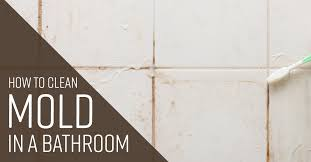 how to clean mold in a bathroom