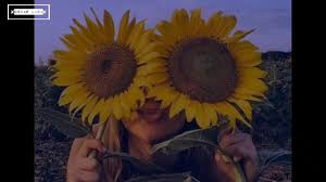 swae lee ft post malone sunflower sub español letra
