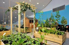 apartment urban gardening ideas