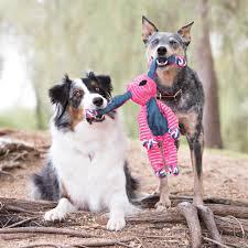 <b>KONG Floppy</b> Knots <b>игрушка</b> для собак Кролик малый 23*14 см ...