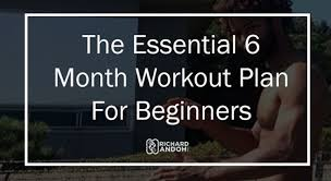 the essential 6 month calisthenics workout plan bar brothers groningen for calisthenics workout