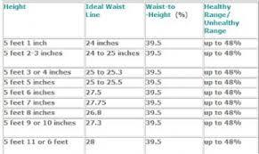 Healthy Waist Size Chart Day 154 New Goal Ideal Waist Size