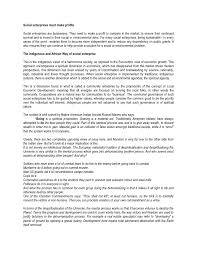 social entrepreneurship essay by thierry alban revert  2