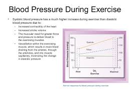Normal Blood Pressure During Exercise Chart Pin By Jessica Joyce On Exercise Physiology Exercise