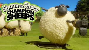 Ném búa | Championsheeps | Những Chú Cừu Thông Minh [Shaun the Sheep] -  YouTube