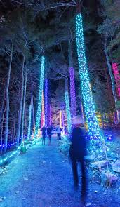 the coastal maine botanical gardens home of the annual gardens aglow holiday event is