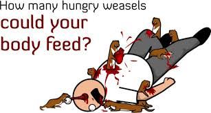 How many hungry weasels could your body feed? Quiz - The Oatmeal