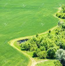 grass field aerial. Contemporary Aerial Landscape With Green Grass Field Nearby Forest And Country Road  Passing By Aerial View To Grass Field T