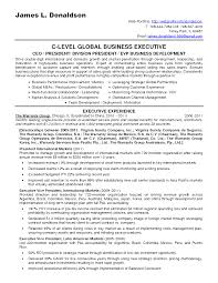 Free Business Development Resume Templates Elegant How To Write A