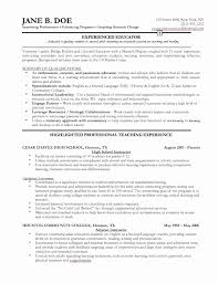Inspirational Sample College Student Resume Lovely It Professional ...