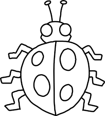 bug coloring pages for preschool photo 31