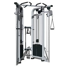 photos of dual pulley life fitness