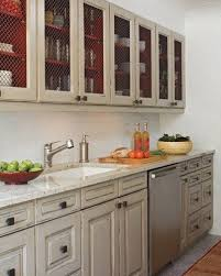 best 25 chicken wire cabinets ideas